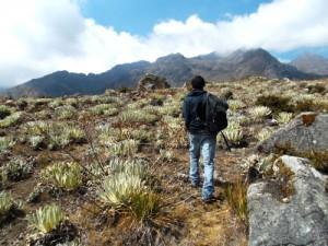 40 Cosas Que he Aprendido Sobre la Oración en mi Viaje Espiritual