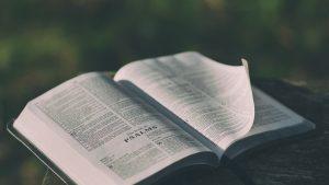 Salmo 36: Nuestra maldad y la misericordia de Dios